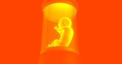 Podemos crescer bebês em úteros artificiais dentro de uma década