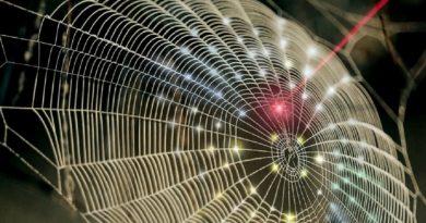 Parabólica inspirada em teia de aranha para captura 3D de imagens