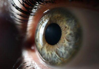 A ciência provou que duas pessoas não veem o mundo do mesmo jeito